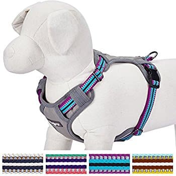 Good Quality Highly Reviewed Dog Harness Vest - $17.99 Amazon lightning deal