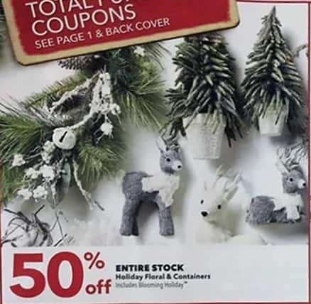 Joann Black Friday: Holiday Containers - 50% OFF
