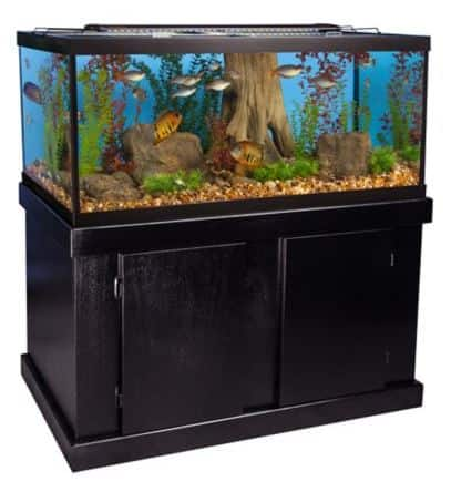 Marineland® 75 Gallon Aquarium Majesty Ensemble petsmart.com $299.99 in store pickup