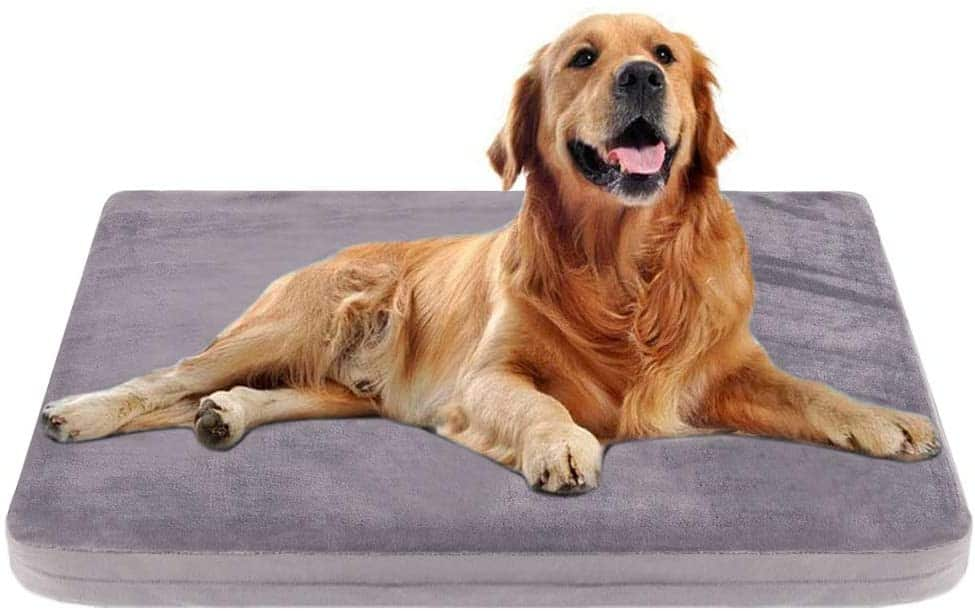 JoicyCo Orthopedic Pillow Dog Bed w/ Removable Cover, Amazon.com - Starting at $12.89