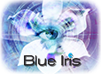 Blue Iris 4 Surveillance Software - Full version $29.97, LE version $14.98, A/C direct from Blue Iris