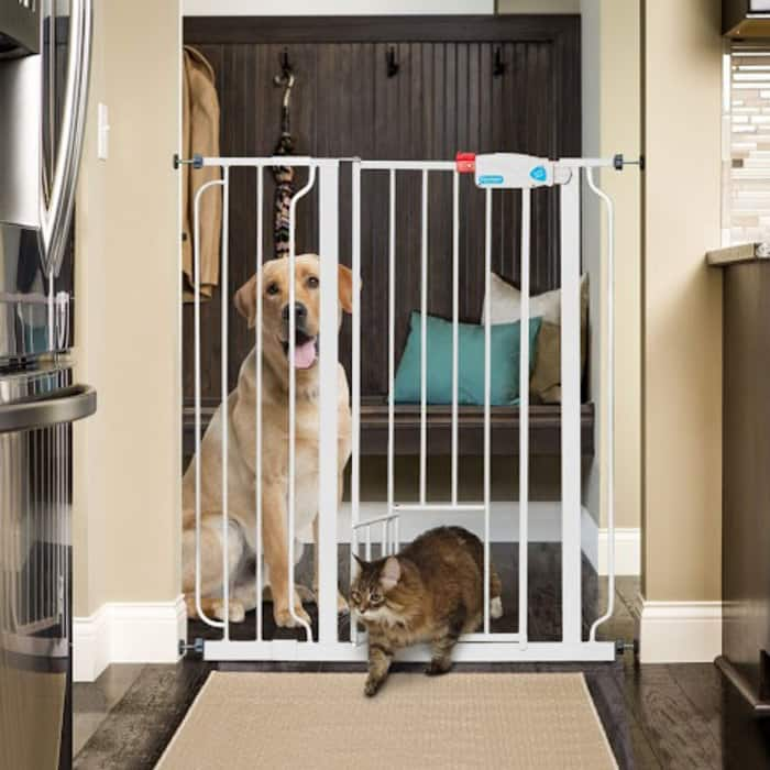 Carlson Extra Tall Pet Gate with Small Pet Door - $37.99 + Free Shipping