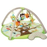 Skip Hop Treetop Friends Activity Gym or Skip Hop Alphabet Zoo Activity Gym $45 + free shipping *Amazon Prime Members*