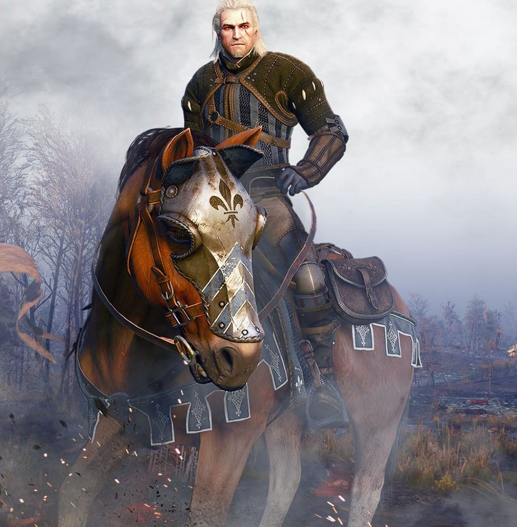 The Witcher 3: Wild Hunt (Xbox One) Beard and Hairstyle Set and Temerian Armor Set DLC Free