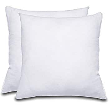 56% OFF Decorative Pillow Insert (Pack of 2, White) Microfiber Cover Indoor White Pillows + FREE S/H $13.59