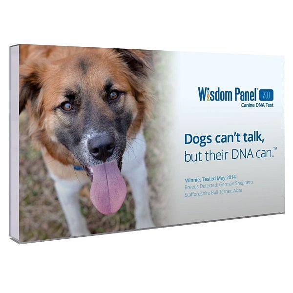 Mars Veterinary Wisdom Panel 3.0 Canine DNA Test $50.99