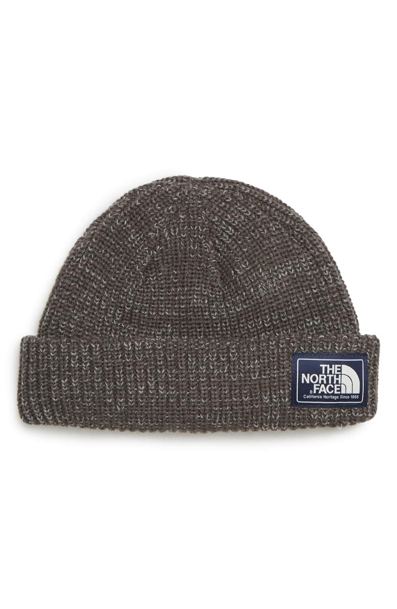 e6f2644f10f The North Face Salty Dog Beanie in Graphite + Free Shipping