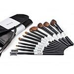 Starter Studio 12-Piece Natural Hair Makeup Brush Set $8.50 AC + Free Shipping!