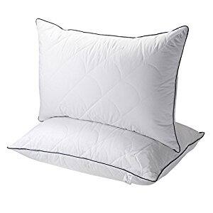2-Pack Sable Registered with FDA Goose Down Alternative Bed Pillow (Queen Size) for $21.99 + FSSS