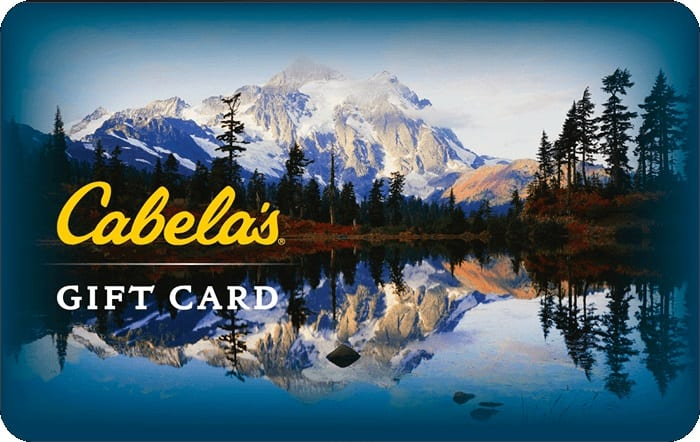 $200 Cabela's GC + $20 Best Buy GC for $200