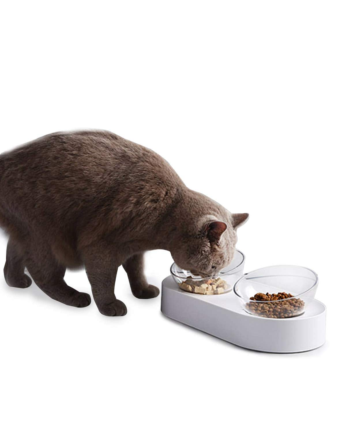 PETKIT Elevated Cat Food Transparent Bowl with Stand - $16.99 + FSSS