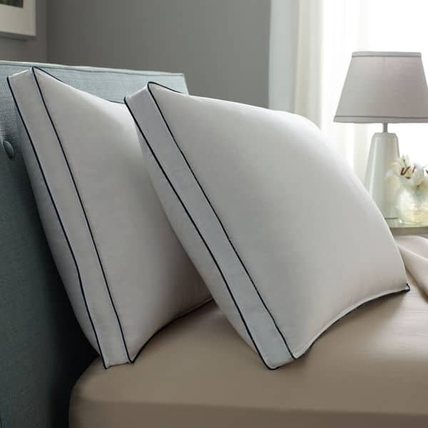 Double DownAround Medium 2 Pack Pillow Pacific Coast - 25% off + Additional 25% off promo code & free shipping $58.78