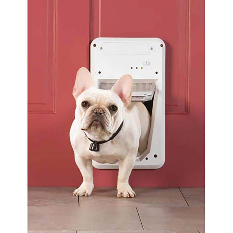 PetSafe Small Electronic Smartdoor $70 + Free Shipping