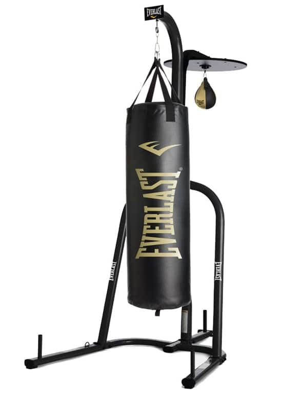 Everlast Powercore Dual Bag and Stand + $20 in Dicks Sporting Goods Cash $133 shipped