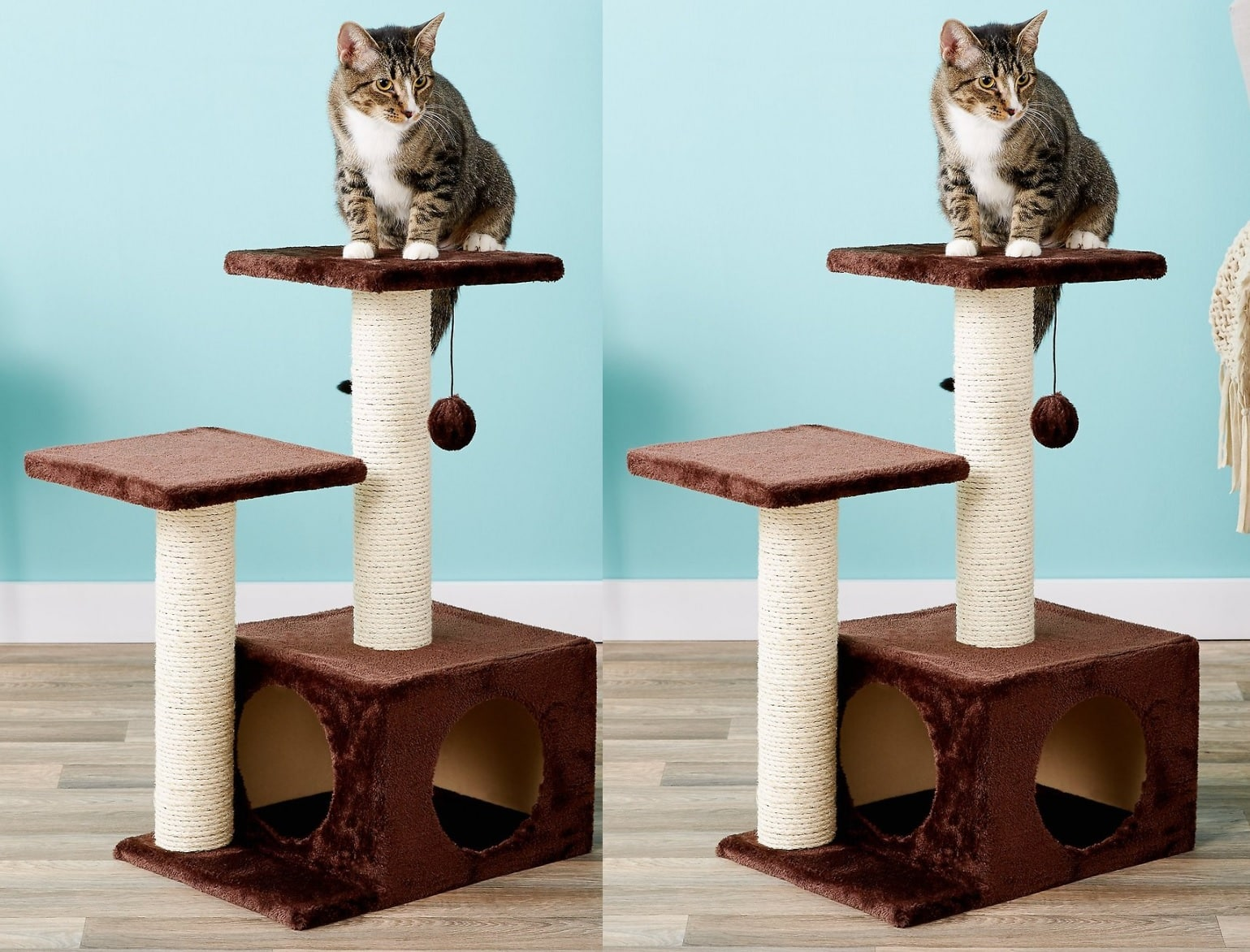 "New Chewy Autoship Customers: 27.75"" Trixie Valencia Cat Tree w/ Scratching Post 2 for $19.87 ($9.93 each) + free shipping"