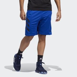 adidas shorts h