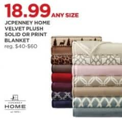 JCPenney Black Friday: JCPenney Home Velvet Plush Solid or Print Blanket for $18.99