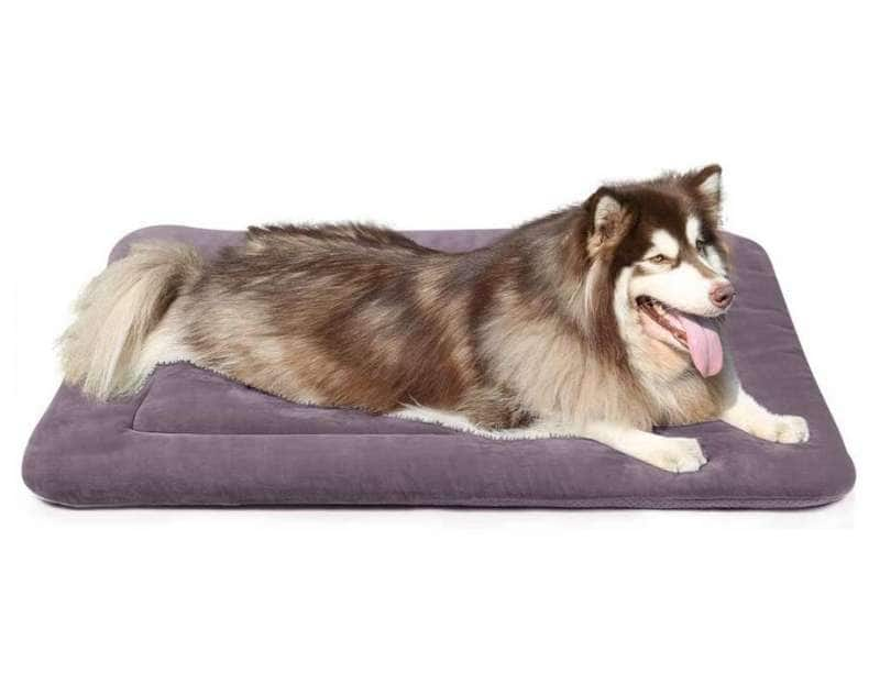40% off Various Kinds of Premium Washable Non-Slip Bottom Dog Beds + Free Shipping $14.39