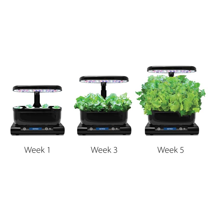 MIRACLE-GRO AEROGARDEN HARVEST + Choose your FREE POD KIT - $79.96 PLUS TAX - FREE SHIPPING after coupon code.