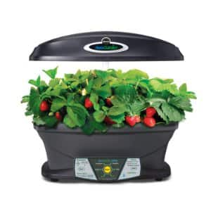 Miracle-Gro AeroGarden Extra Indoor Garden with Gourmet Herb Seed Kit for $100 (closer to $200 elewhere), Free Shipping with Amazon