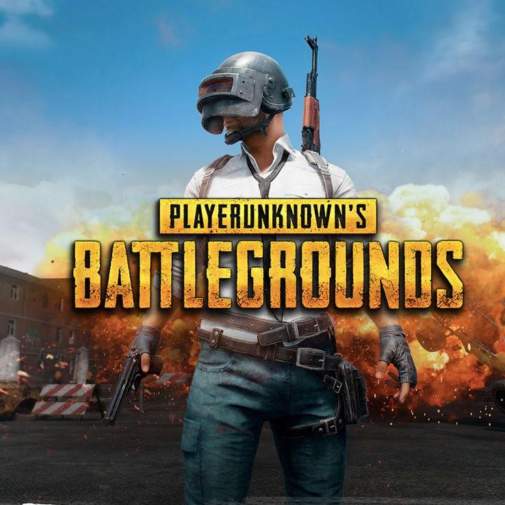 PlayerUnknown's Battlegrounds (PC Digital Code) $24.17