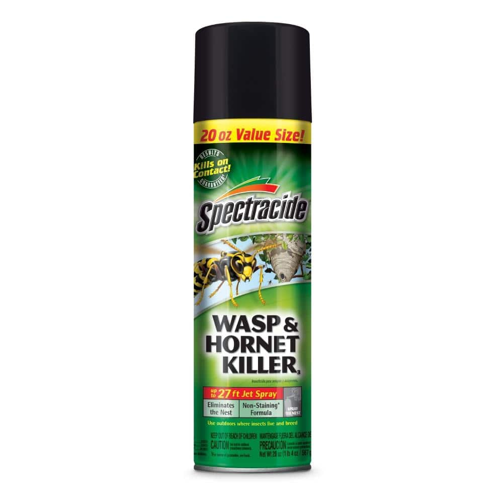 Spectracide 20 oz. Wasp and Hornet Aerosol Spray Killer $1.99
