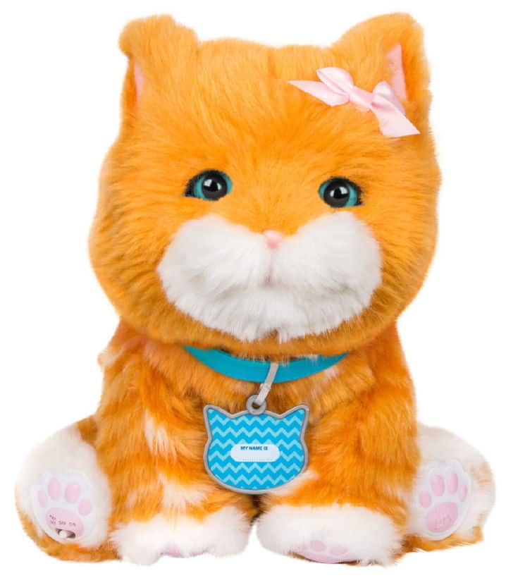 Little Live Pets Puddin My Dream Kitten $38.49 FS @ Toys R Us