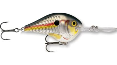 Rapala DT Lures Multiple Sizes and Colors $5.24