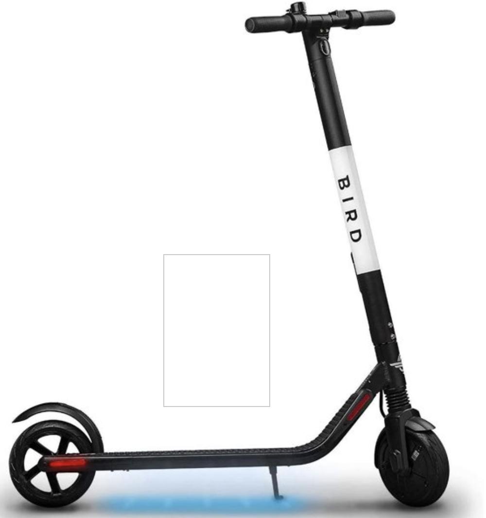Renewed Bird Scooter ES1-300 $200