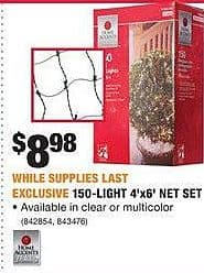 Home Depot Black Friday: 150-Light 4'x6' Net Set for $8.98