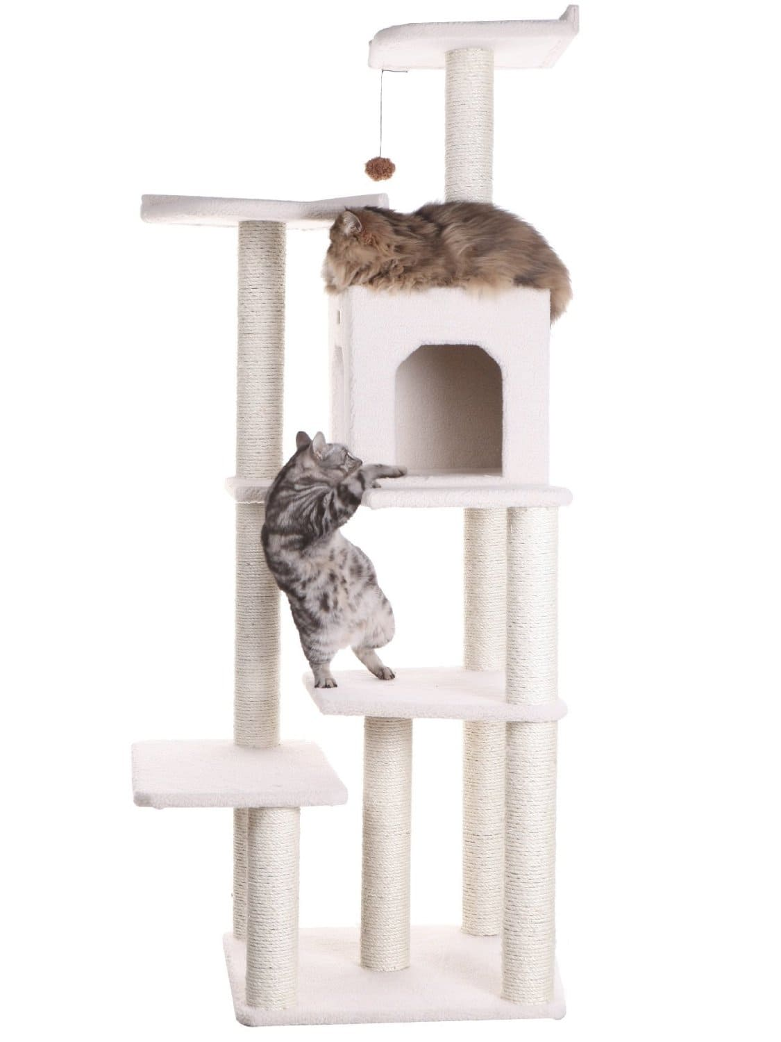 Armarkat Cat Tree Condo former front page Deal 64.99 now 44.51, and amex offer to save even more!