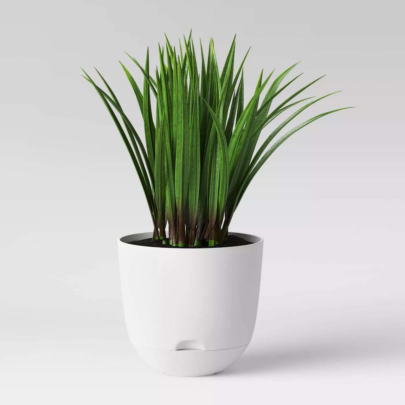 "8"" Self Watering Planter - Room Essentials™- 6 different colors @ Target.com - $3.00"