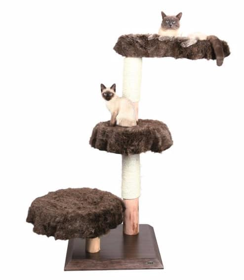 PetSmart Cat Trees $37.99 + $49.99 + Free Shipping