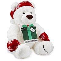 Prime Members: LE Gund Teddy Bear w/ Amazon Gift Card Purchase