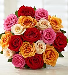 18-Count Footballentine Multi-Colored Roses  Free + $14.99 Shipping (VISA Checkout Required)