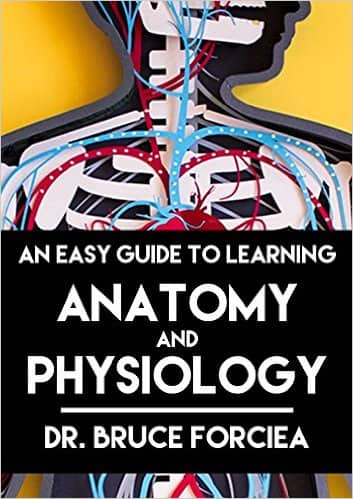 An Easy Guide to Learning Anatomy and Physiology [Kindle Edition] $0.99 ~ Amazon