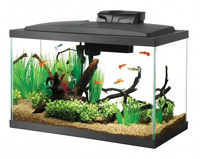 Aqueon Standard Open Glass Aquarium Tank (various sizes/gallon) From $10 + Free Curbside Pickup