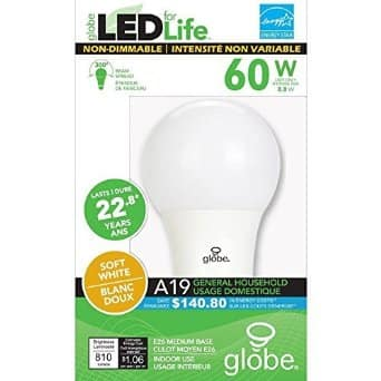 LED for Life Non-Dimmable Light Bulb 60 Watt Equivalent $1 dollar at dollar tree YMMV