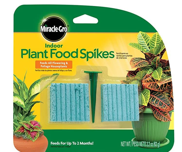 $1.97 for Miracle-Gro Indoor Plant Food, 48-Spikes