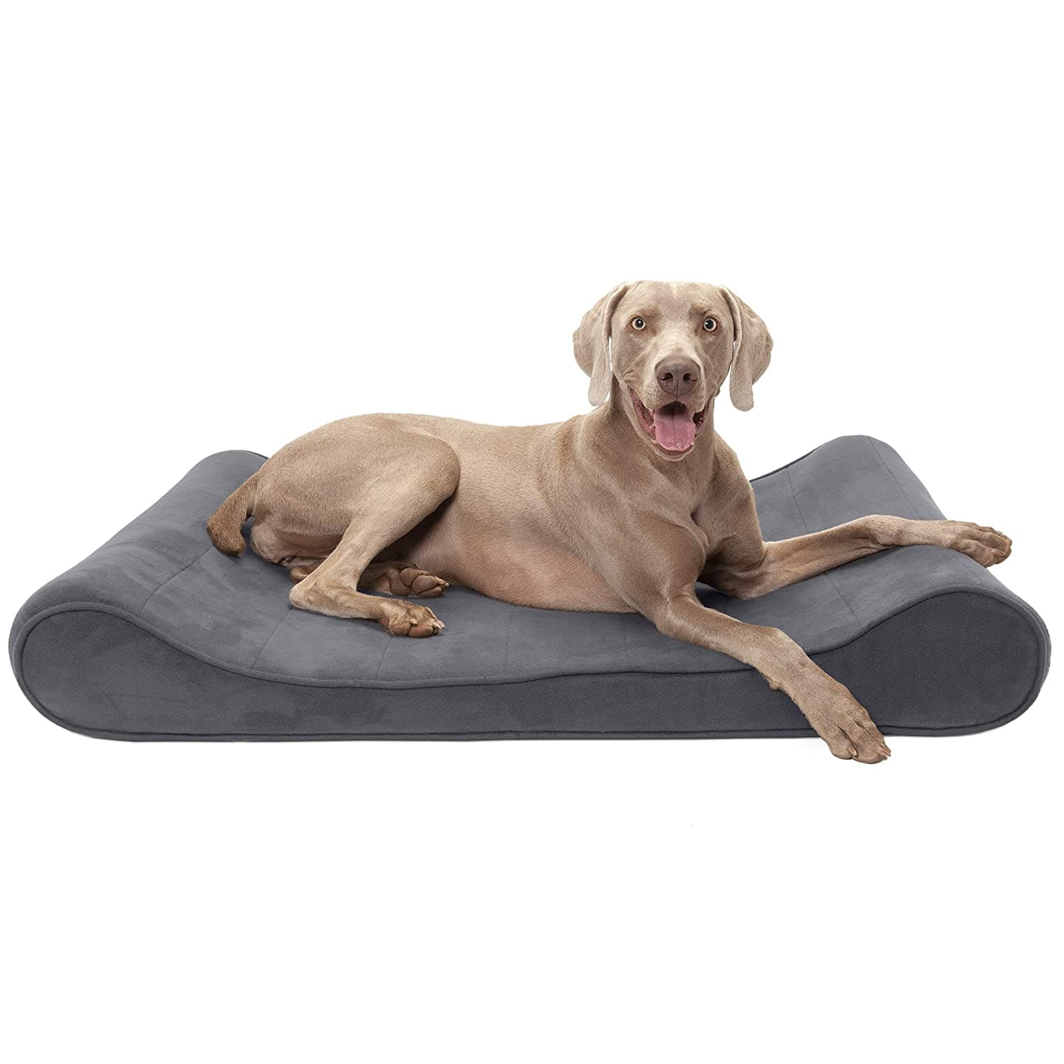 Furhaven Pet Dog Bed | Orthopedic Micro Velvet Ergonomic Luxe Lounger Cradle Mattress Contour Pet Bed for Dogs & Cats - [Orthopedic Foam] for $27