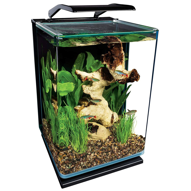 prime members 5 gallon marineland portrait aquarium kit