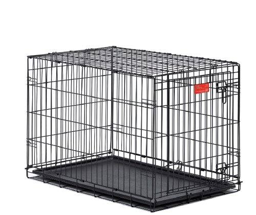 Prime Members: MidWest Life Stages Folding Metal Dog Crate (41lb-70lb dogs)  $25 + Free Shipping