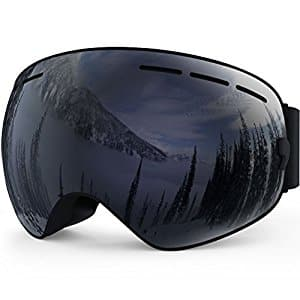 Zionor Snowmobile Snowboard Skate Ski Goggles with Detachable Lens $32.55 + free shipping