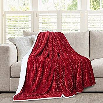 Micromink Flannel Throw Blanket + FS w/ Prime - $7.00