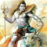 shivarajan's Avatar