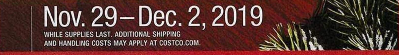 Costco Black Friday 2019