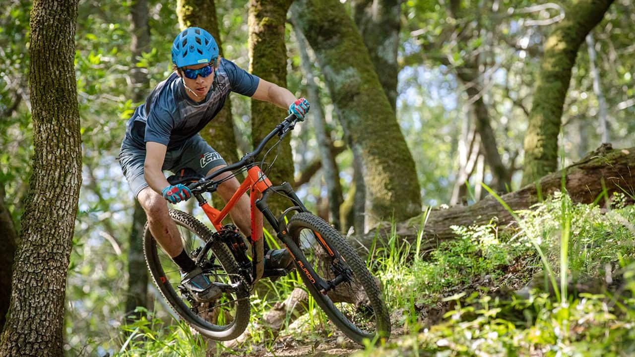 Great mountain bikes for less.