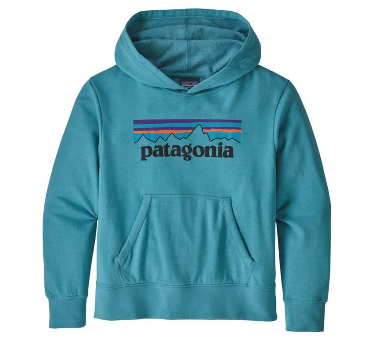Patagonia Kids' Lightweight Graphic Hoody Sweatshirt